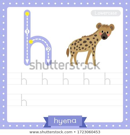 Lettre h hyène illustration enfants nature enfant Photo stock © bluering