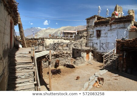 jharkot village in annapurna region nepal stock photo © oliverfoerstner