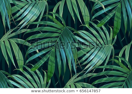 seamless tropical jungle floral pattern with palm fronds illustration stock photo © fresh_5265954