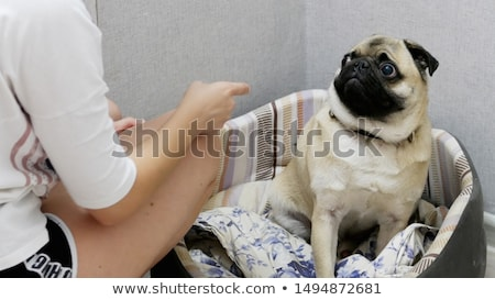 Genç kız parmak siyah kız yüz Stok fotoğraf © ralanscott