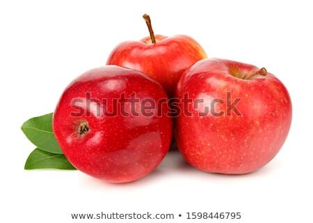зеленый здорового льстец яблоко белый овощей Сток-фото © Yatsenko