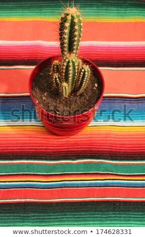 Mexican serape with fringe for Cinco de Mayo holiday background  Stock photo © tab62