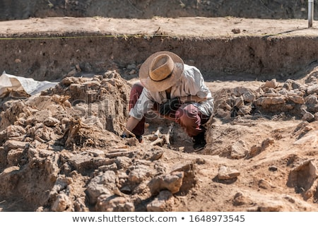 archaeological excavation with skeletons and skulls stock photo © klinker