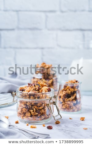 morning granola with hazelnuts, raisins and cranberries Stock photo © Digifoodstock