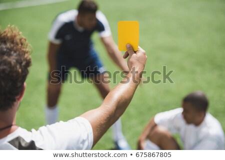 Döntőbíró futballpálya mutat citromsárga kártya sport Stock fotó © dolgachov