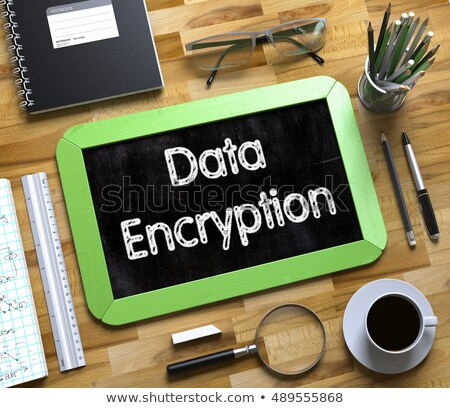Handwritten Data Encryption on a Chalkboard. Stock photo © tashatuvango