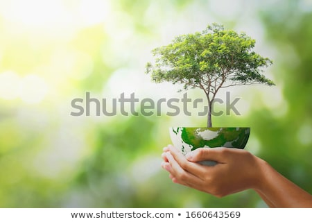 Eco green energy world continents map Stock photo © rufous