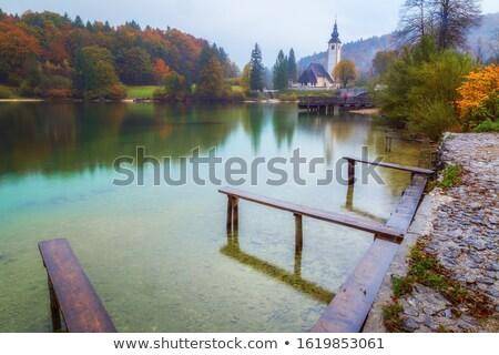 Esik az eső tó gyönyörű egyedi park természet Stock fotó © stevanovicigor