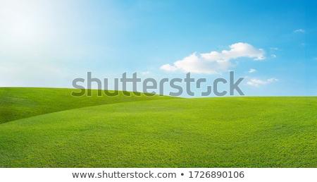 Ciel bleu colline nuages vert ciel nature Photo stock © Dinga