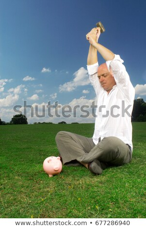 man bout to smash piggy bank Stock photo © IS2