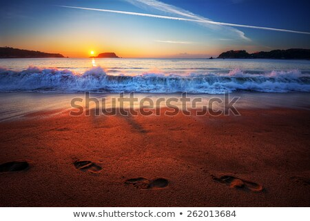 Waves crashing on beach with footprints Stock photo © IS2