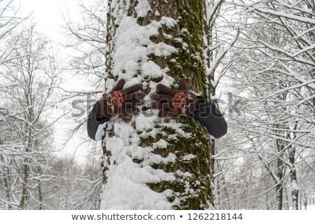 男 木の幹 ツリー 森林 バランス ストックフォト © IS2
