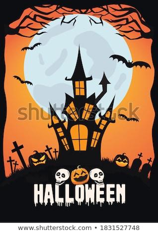 Gelukkig halloween maan begraafplaats donkere vakantie Stockfoto © articular