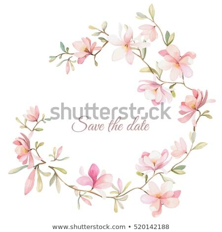 Cute elegante floreale rosa viola Foto d'archivio © Pravokrugulnik