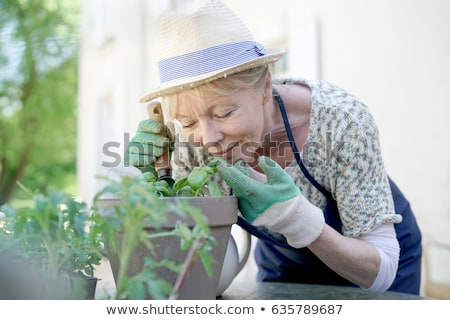 Stock photo: Senior woman with flowers in garden