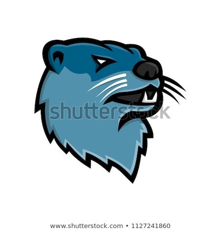 north american river otter mascot stock photo © patrimonio
