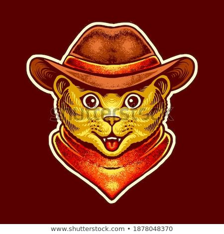 cartoon smiling cowboy kitten stock photo © cthoman