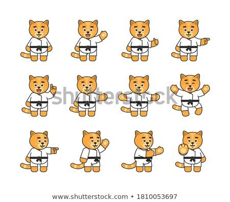 Cartoon Smiling Karate Kitten Stock photo © cthoman