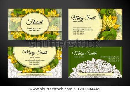 Szett kártyák vállalati arculat elemek gyönyörű Stock fotó © lissantee