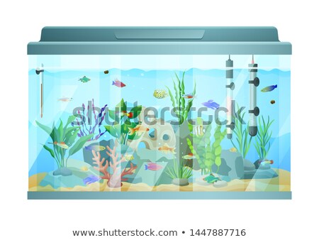 Fish swimming among stones and seaweed in aquarium Stock photo © robuart