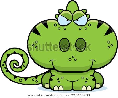 Karikatür sinsi bukalemun örnek yeşil genç Stok fotoğraf © cthoman