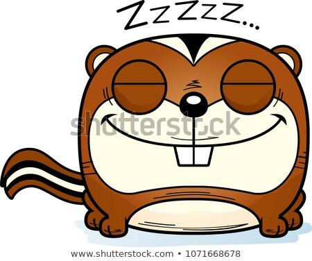Cartoon Chipmunk Napping Stock photo © cthoman