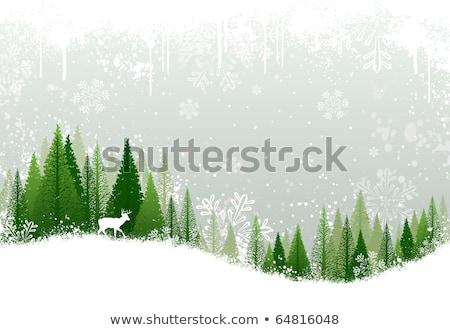 Stockfoto: Groene · winter · bos · rendier · vector