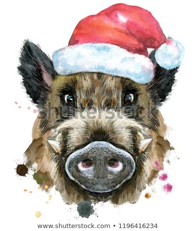 Watercolor portrait of wild boar with brown hat Stock photo © Natalia_1947