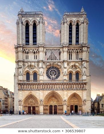Gothic stylu Paryż wygaśnięcia drzewo Zdjęcia stock © Givaga