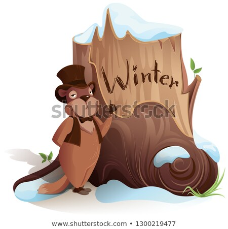 Groundhog Day. Marmot announces early arrival of winter Stock photo © orensila
