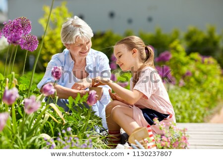 grandmother and girl seeding flowers at garden Stock photo © dolgachov