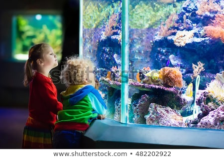 Little Boy and girl watching tropical coral fish in large sea life tank. Kids at the zoo aquarium Stock photo © galitskaya