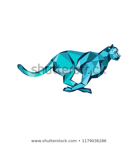 Cheetah Full Speed Running Low Poly Stock photo © patrimonio