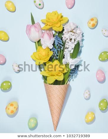 tulpen · roze · Blauw · bloemen · tuin · bokeh - stockfoto © barbaraneveu