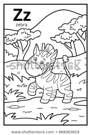 z · betű · zebra · illusztráció · természet · terv · háttér - stock fotó © colematt
