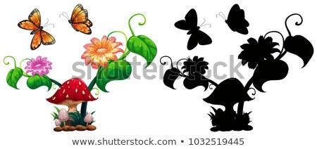 Bogarak gomba kert illusztráció természet tájkép Stock fotó © colematt