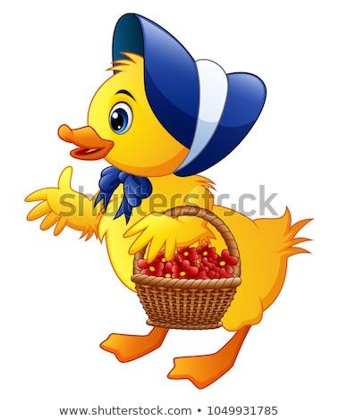 Geel chick bloem groene Stockfoto © hittoon