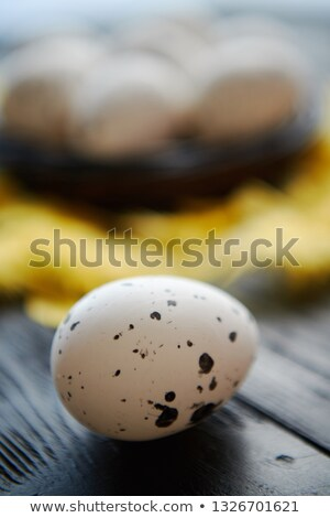 Stock foto: Close Up On Whole Chicken Egg In Front Of Nest On A Black Wooden Background
