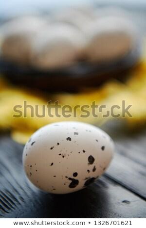 全体 鶏 卵 巣 黒 ストックフォト © dash