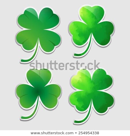 Vector verde trébol hojas pegatinas establecer Foto stock © blumer1979