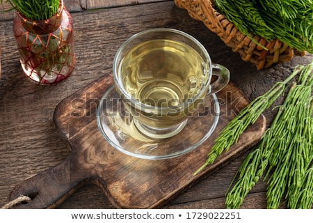 A cup of horsetail tea with fresh horsetail twigs Stock photo © madeleine_steinbach