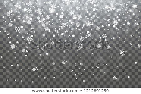 ストックフォト: Christmas Snow Falling Snowflakes On Dark Background Snowfall Vector Illustration