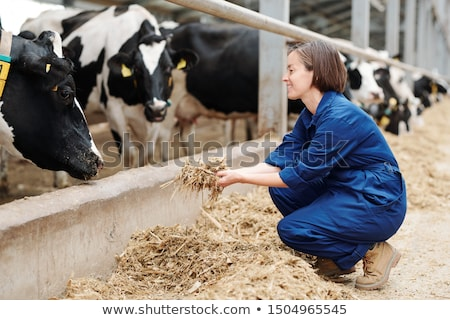 Happy young worker of livestock farm squatting while holding heap of fresh hay Stock photo © pressmaster