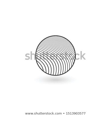 bloem · grafisch · ontwerp · sjabloon · vector · geïsoleerd · illustratie - stockfoto © kyryloff