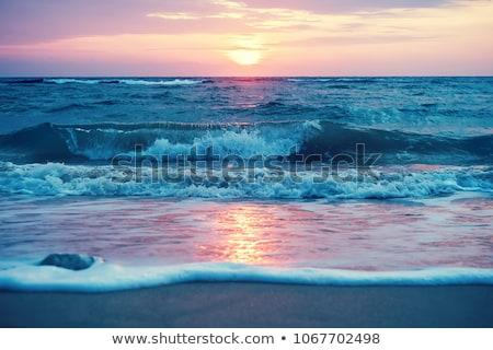 Tropicales paisaje rock mar verde Foto stock © vapi