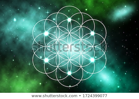 Mandala Circle with Floral Elements Sacred Geometry Stock photo © robuart