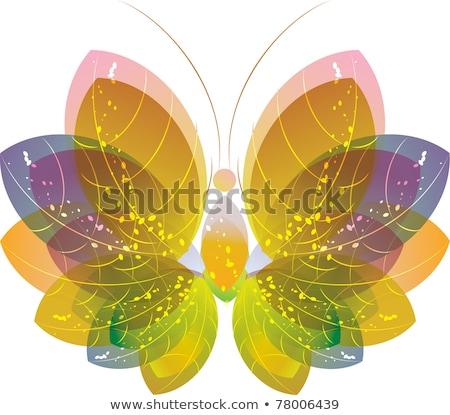 Színes absztrakt pillangó fehér virágmintás művészet Stock fotó © Elmiko