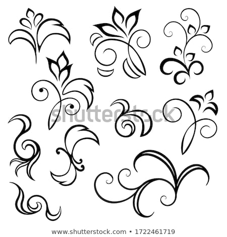 Black-and-white scroll Stock photo © nurrka