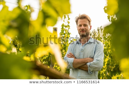 Producers in front of vines Stock photo © photography33