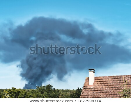Plants, plastic burning causing air pollution Stock photo © mnsanthoshkumar